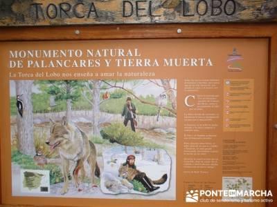 Monumento Natural de Palancares y Tierra Muerta; grupos de trekking